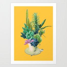 Arid garden Art Print