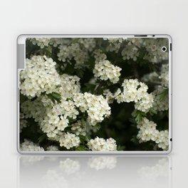 Hawthorn Flowers Laptop & iPad Skin