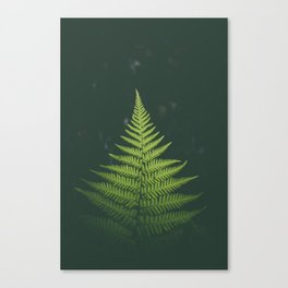 Fern Leaf Green Canvas Print