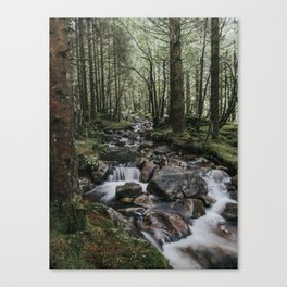 The Fairytale Forest - Landscape and Nature Photography Canvas Print