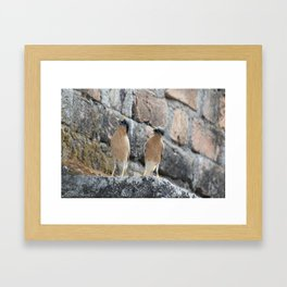 Come over here Framed Art Print