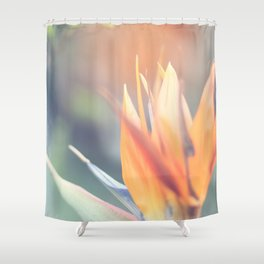 Paradise 3 Shower Curtain