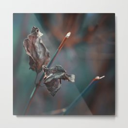 Dark Autumn. Metal Print
