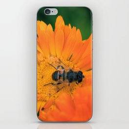 Summer Flowers and the Honeybee iPhone Skin