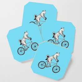 Shiba Inu Riding a Bicycle Coaster