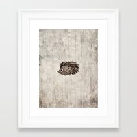 hedgehog Framed Art Prints featuring Hedgehog by Mr and Mrs Quirynen