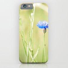 crawl up Slim Case iPhone 6s
