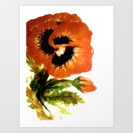 The Pansy A Flower Of Friendship Art Print