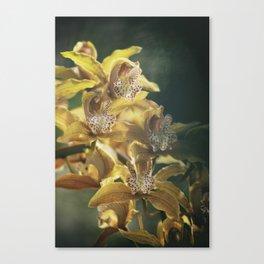Orchid Haze Canvas Print