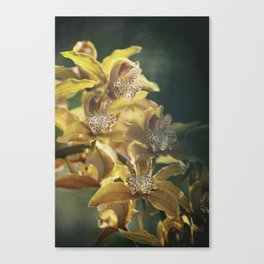 Orchid Haze Canvas Print