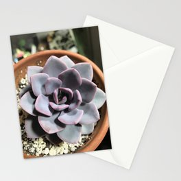 Purple Succulent Stationery Cards