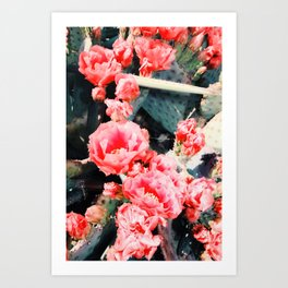 closeup blooming red cactus flower texture background Art Print