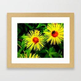 Bee Heaven Framed Art Print