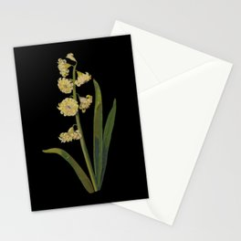 Hyacinthus Orientalis Ophir by Mary Delany Paper Collage Floral Flower Botanical Paper Mosaic Vintag Stationery Cards