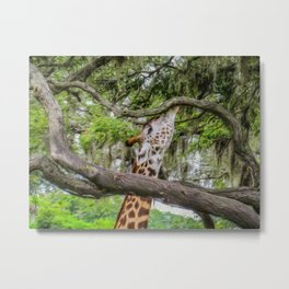 Just Minding My Own Business Metal Print