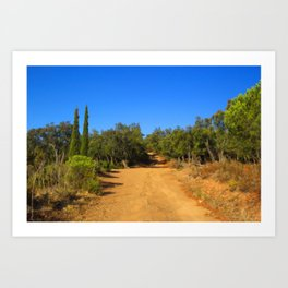On The Trail Art Print