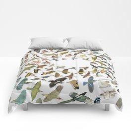 Bird, Birds, Birds Comforters
