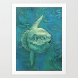 Sun Fish / Mola Mola Art Print