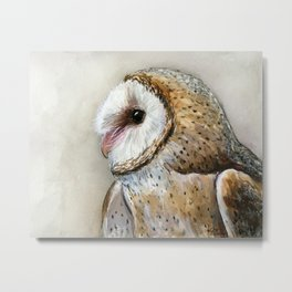 Barn Owl Watercolor, Birds Of Prey Wild Animals Owls Metal Print