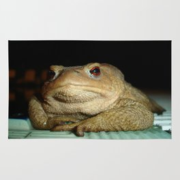 A Common Toad With Philosophical Disposition Rug