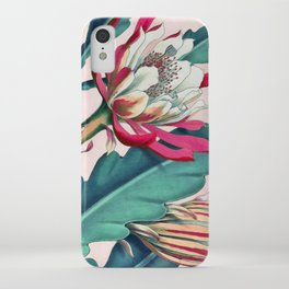 Flowering cactus IV iPhone Case