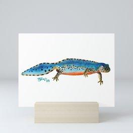Newt Mini Art Print