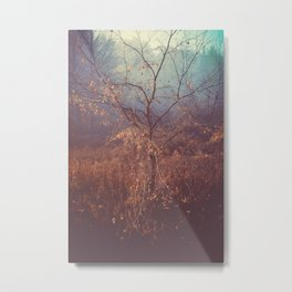 Another Story Metal Print