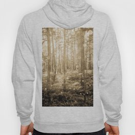Vintage Sepia Fairy Forest Hoody