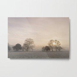 Sunrise through fog on a frosty morning. Santon Downham, Norfolk, UK. Metal Print