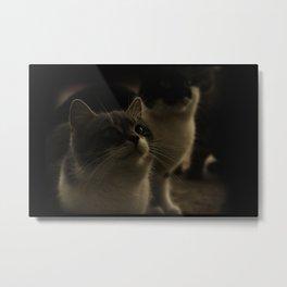 Kitty Katz Metal Print