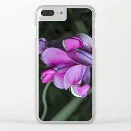 Sweet pea flowers Clear iPhone Case