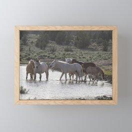 Cooling Off Framed Mini Art Print