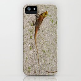 Tiny Dragon iPhone Case