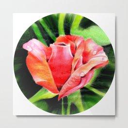 Color Rose Metal Print