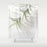 succulent Shower Curtains featuring succulent by Die Schönheit des Augenblicks