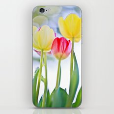 Cheerful Thoughts iPhone & iPod Skin