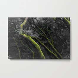 Mossy Bay Trees in Selective Black and White Metal Print