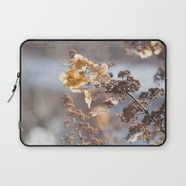 Sunlight through Dried Flowers Laptop Sleeve