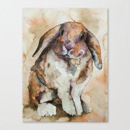 BUNNY #1 Canvas Print