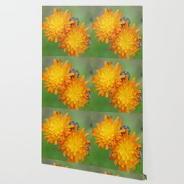Bright Yellow and Orange Flowers Wallpaper