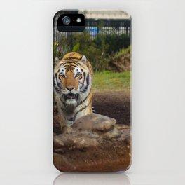 LSU's Mike VI iPhone Case