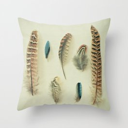 The Feather Collection Throw Pillow