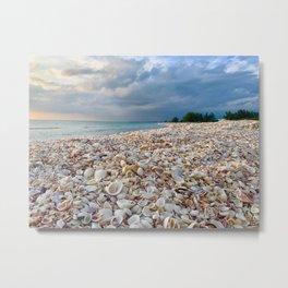 Nokomis Shells Metal Print
