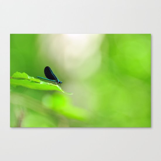 Blue Damsel and the Lime Green Sky Canvas Print