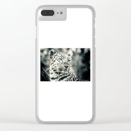 Love Panther III Clear iPhone Case
