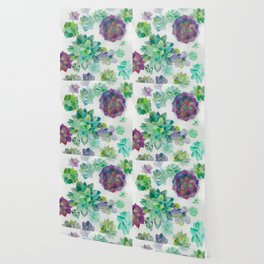 minimalist watercolor succulent arrangement Wallpaper