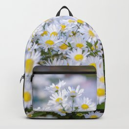 Daisy flower Asteraceae, daisy, beautiful view, daisy hill, View Poster, Canavas Print, Wall Hanging Backpack