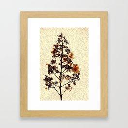 Flowery Stem Framed Art Print