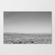 Death Valley 2.0 Canvas Print