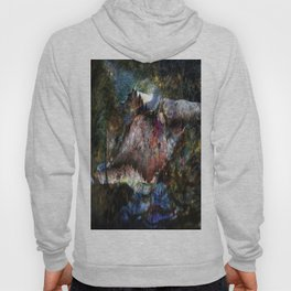 abstract 777 Hoody